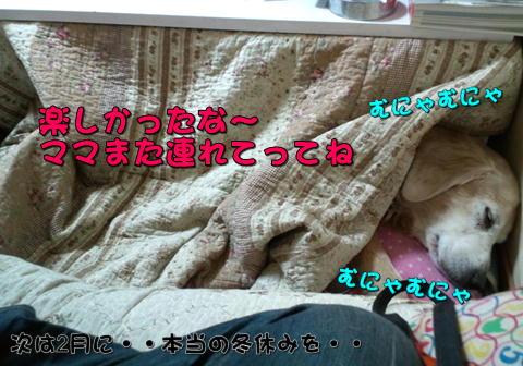 f0234395_18513324.jpg