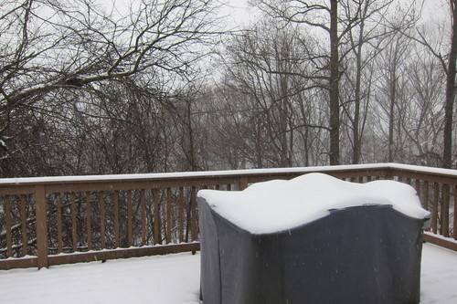 NYは、雪ですがな・・・_d0240098_2531798.jpg