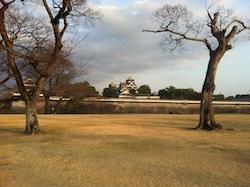 熊本城マラソンへの道 コース一部試走Part3_c0052304_611626.jpg