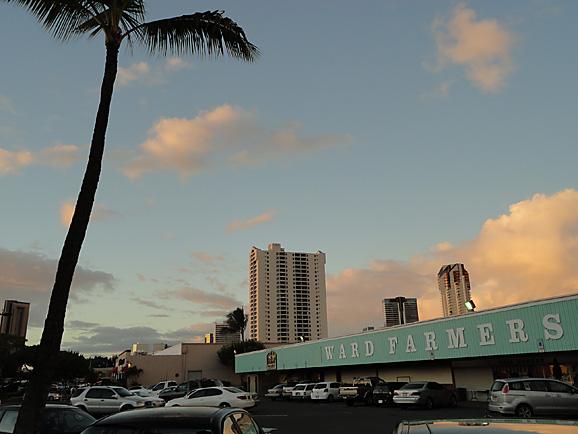 ハワイ9_e0230011_17122549.jpg