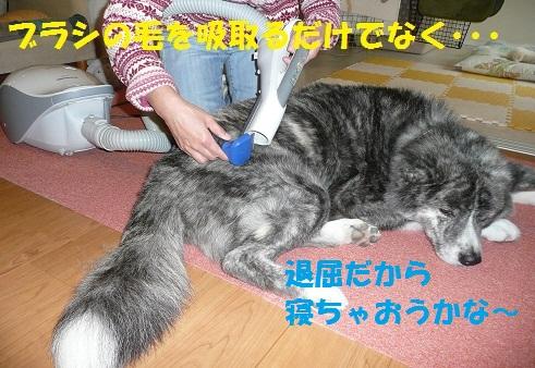 f0121712_14354071.jpg