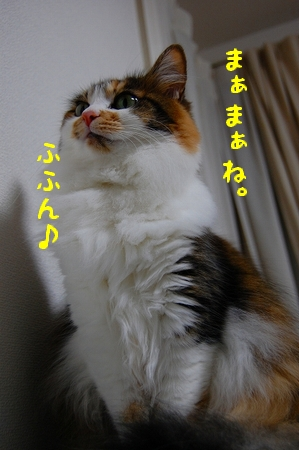 c0181639_023089.jpg