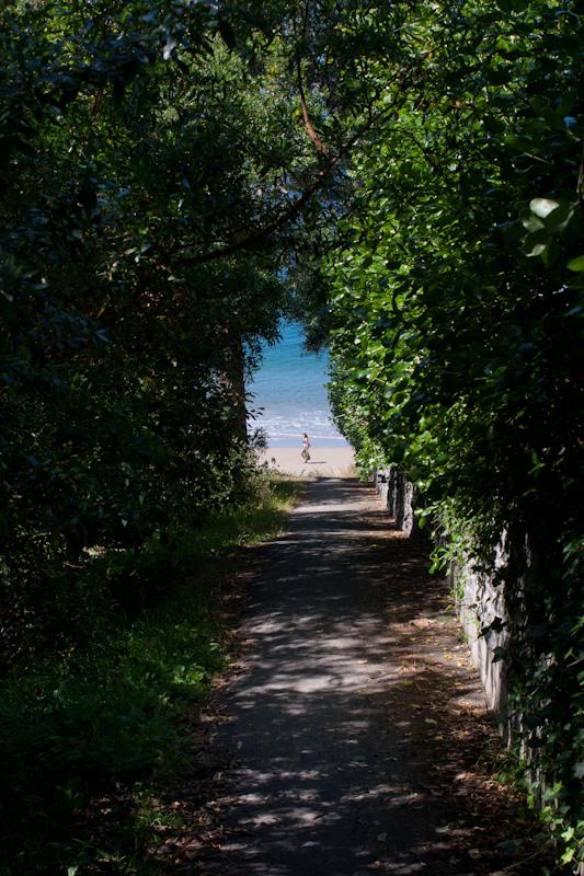 海へ続く道_f0137354_1844189.jpg