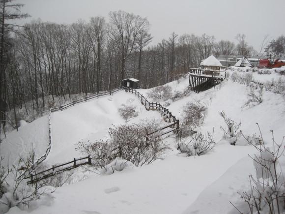 雪景色のランチ_f0236260_343992.jpg