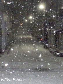 ボタン雪。_b0238766_2152917.jpg