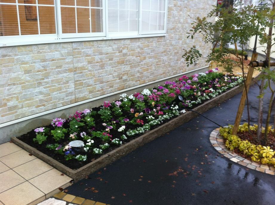 花壇の植栽_e0128469_2322490.jpg