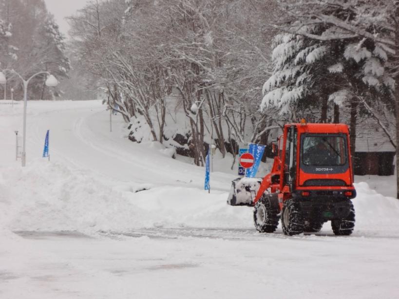 雪の作業_f0180878_2036128.jpg