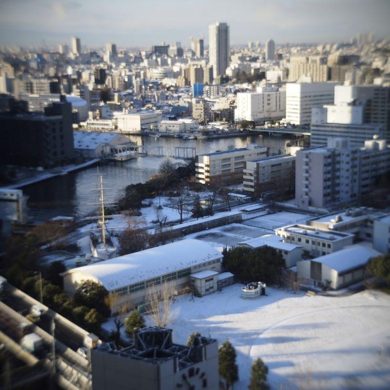 東京 雪_d0147406_8171183.jpg