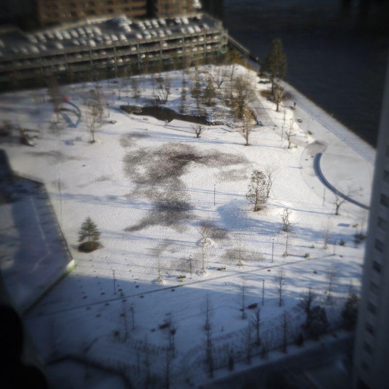 東京 雪_d0147406_817125.jpg