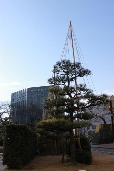 2012年1月24日9時晴れ@福井_f0229508_8582564.jpg