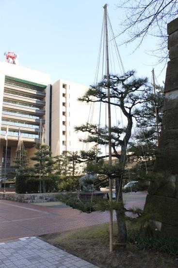 2012年1月24日9時晴れ@福井_f0229508_8585361.jpg