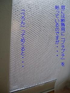 b0200310_7542356.jpg
