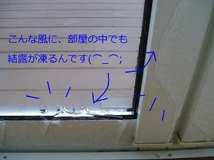 b0200310_7544131.jpg