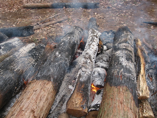炭化木作り~☆_a0125419_103074.jpg