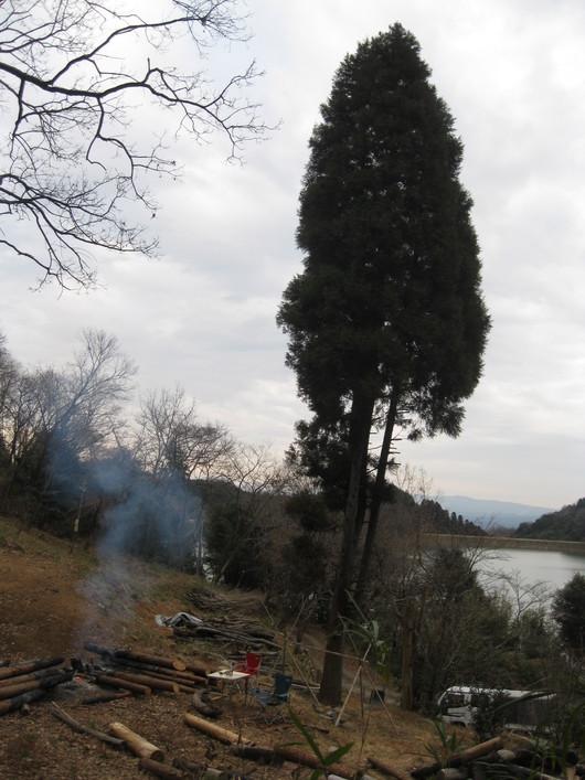 炭化木作り~☆_a0125419_1081248.jpg