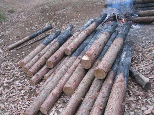 炭化木作り~☆_a0125419_109345.jpg