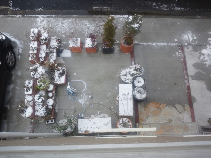 雪は溶けても_a0019032_1393370.jpg