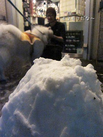 雪降ったよー!_c0062832_643578.jpg