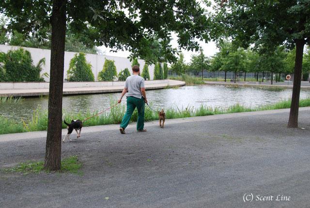 ベルリンのティアハイムのこと_c0099133_118690.jpg