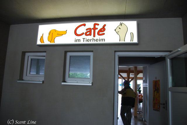 ベルリンのティアハイムのこと_c0099133_1512731.jpg