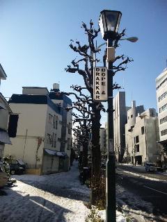 雪景色の外苑西通り_d0108933_1689100.jpg