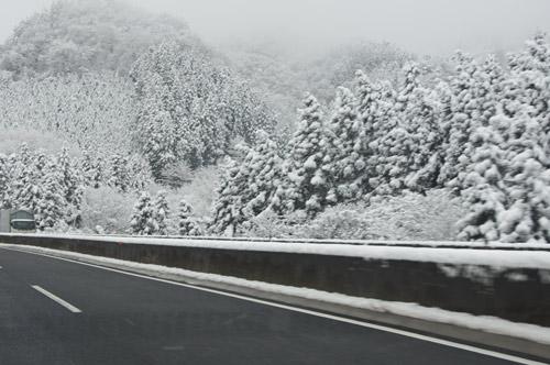 ばらしちゃいます!!雪遊び _e0232343_16445544.jpg