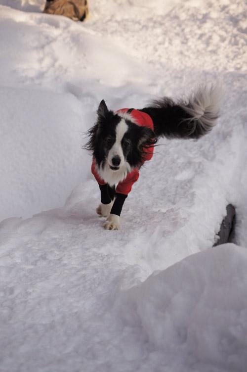 ばらしちゃいます!!雪遊び _e0232343_17364487.jpg