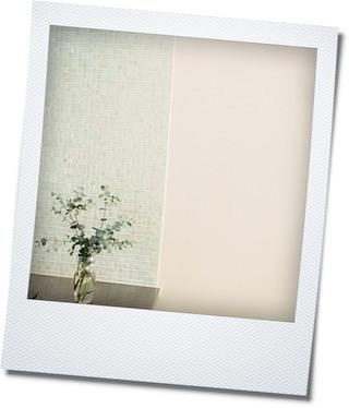 小さな庭の植物_e0214646_1020956.jpg