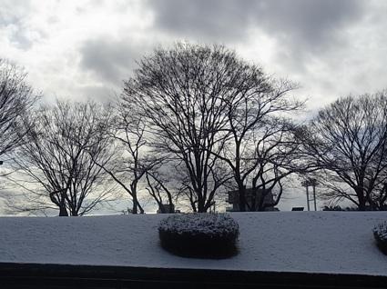 雪の公園_c0113755_21383037.jpg