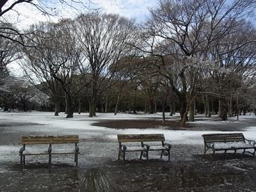 雪の公園_c0113755_21395696.jpg