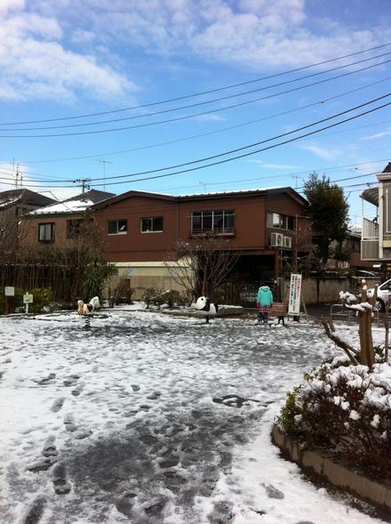 雪やこんこ_a0160758_1431017.jpg