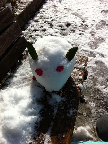 雪やこんこ_a0160758_1445732.jpg