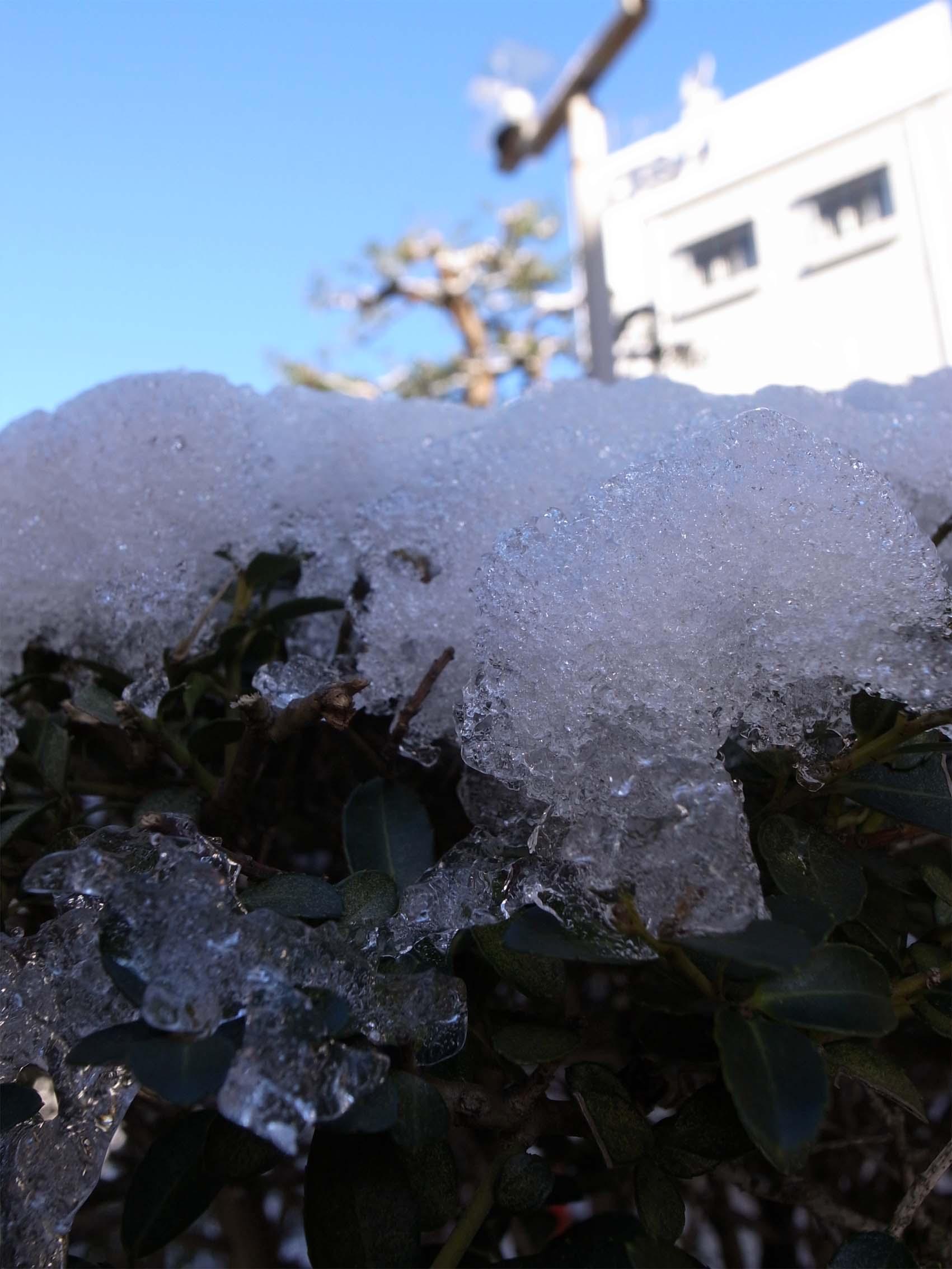 原宿は少しだけ雪景色_f0227963_20223799.jpg