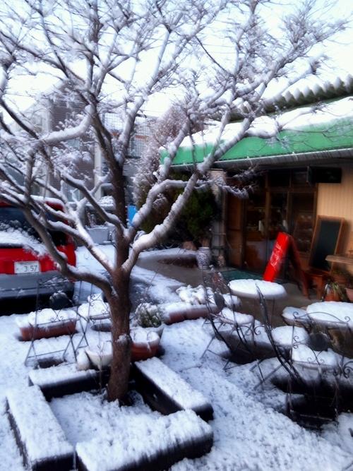 雪かき_a0078271_11563374.jpg