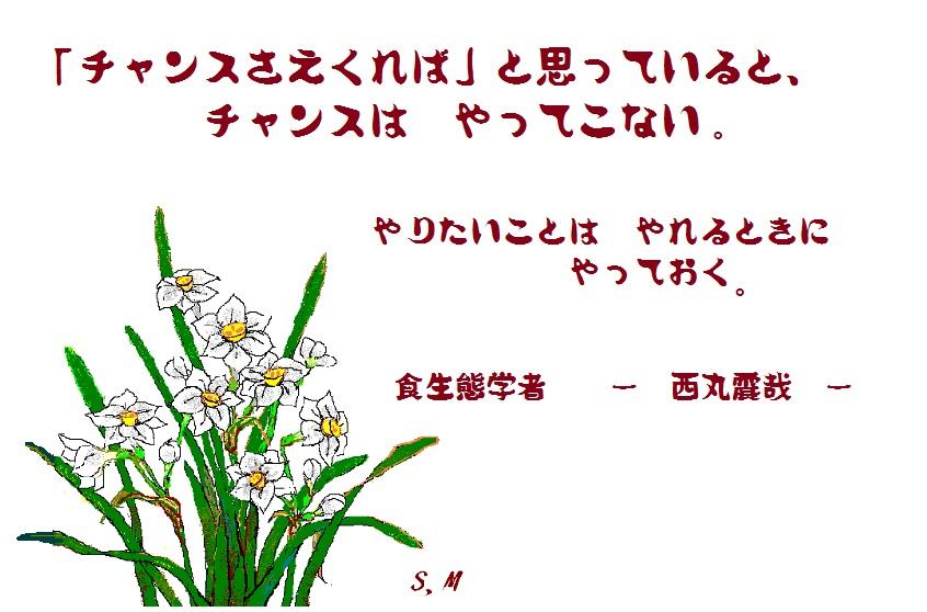 d0083472_143441.jpg