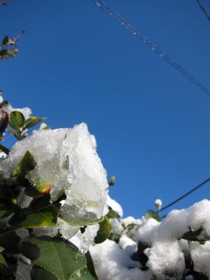 SNOW_a0027275_21173912.jpg