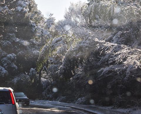 勉強会、雪、渋滞ドライブ_c0002682_1252899.jpg