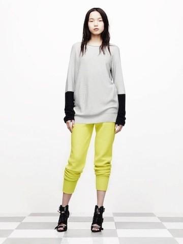 Alexander Wang and T by Alexander Wang Rosort 2012 collection_f0111683_17113256.jpg