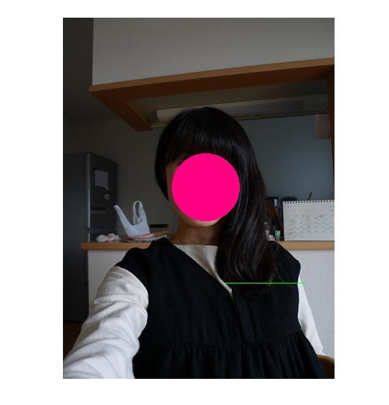 髪の毛を切りたい。_a0188798_1474698.jpg