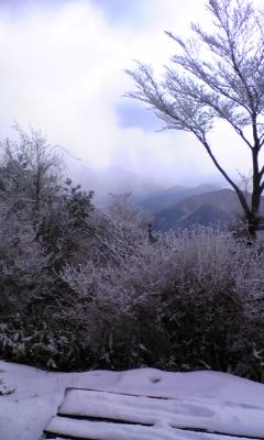 サラガミネ山頂_d0178999_11531780.jpg