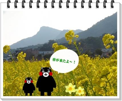 b0025101_23132643.jpg