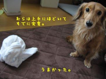 b0044804_160728.jpg
