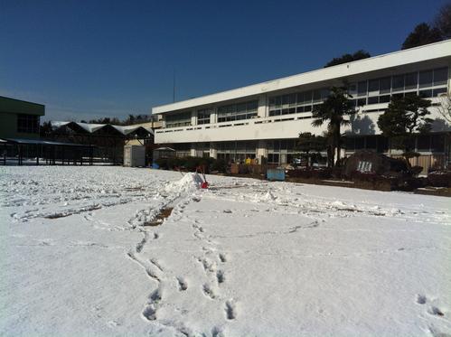 雪の守谷・アーカススタジオ_a0216706_1163923.jpg
