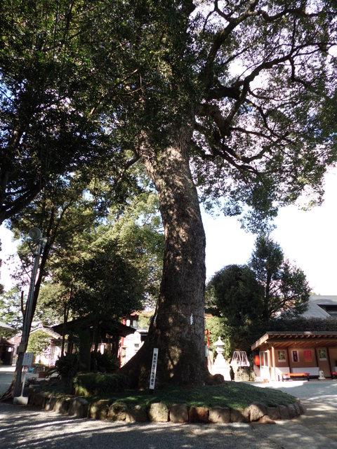 豊後街道を往く~三宮神社~_b0228113_957618.jpg