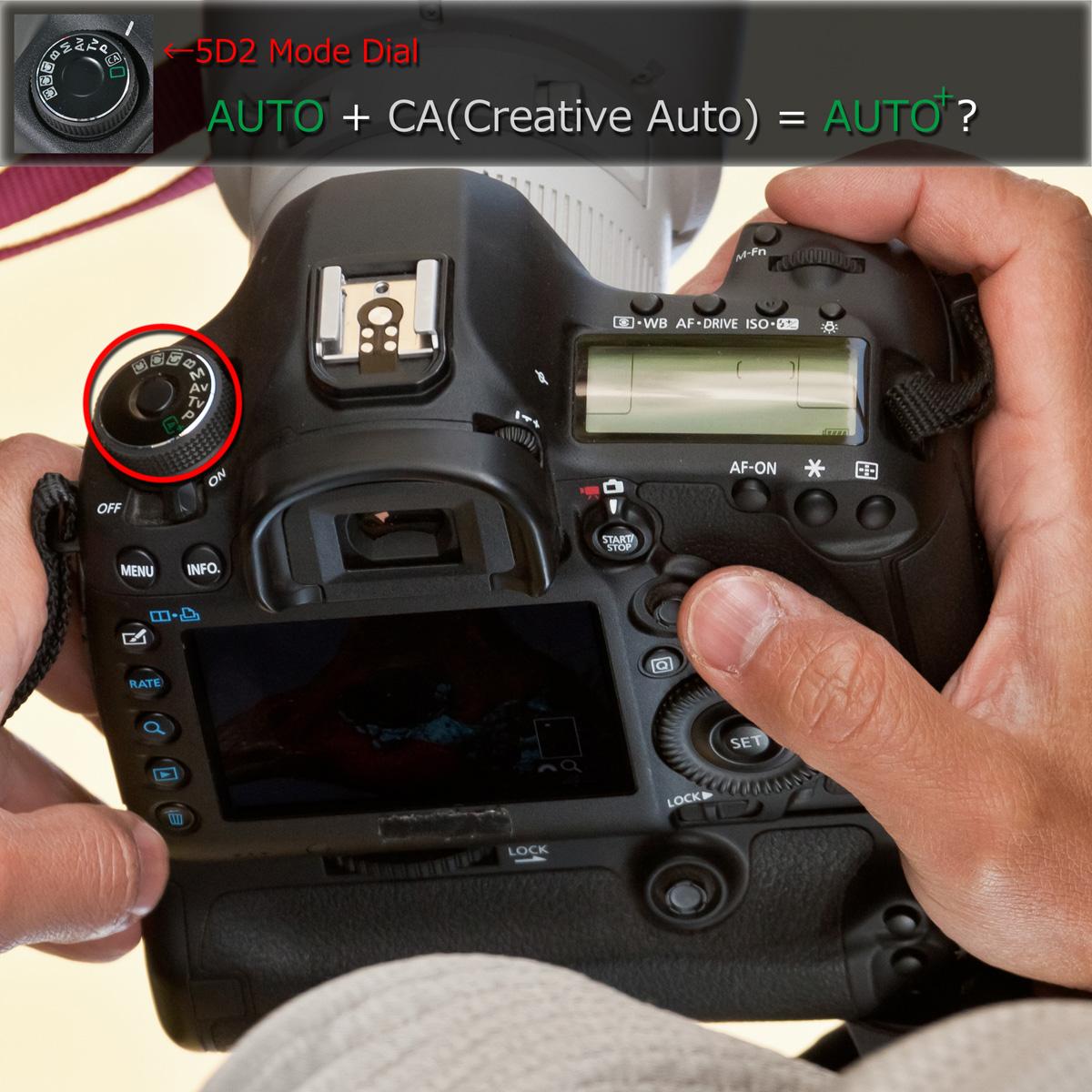 ついに5D3らしきカメラがスクープされた!!_b0213320_2273218.jpg