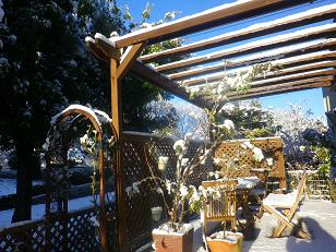 昨日は雪で大変・・・。_a0139242_5302146.jpg