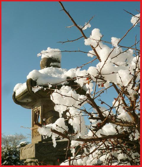 青山・雪の絶景。_e0236072_13502725.jpg
