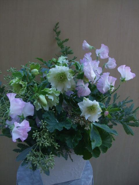 オークリーフ(八重咲きクリスマスローズとスイートピー・モネのアレンジメント)_f0049672_1882543.jpg