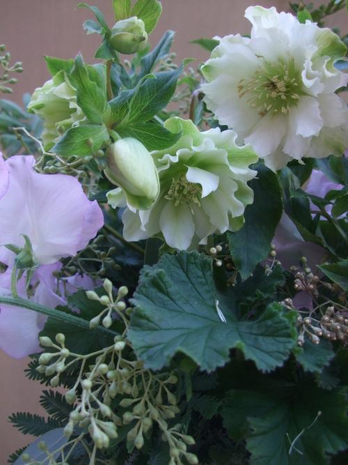 オークリーフ(八重咲きクリスマスローズとスイートピー・モネのアレンジメント)_f0049672_1883268.jpg