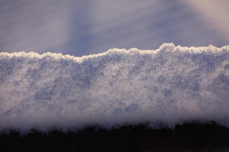雪の朝(1月25日)_f0075075_8464398.jpg